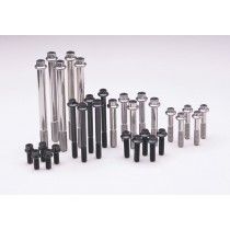 Arp 651-4000 5//16-18 X 4.000 hex black oxide bolts